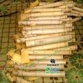 bambu undangan gulung jual