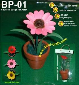 souvenir bunga kering aster